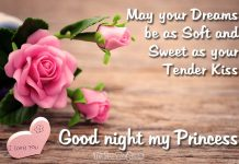 Good Night my Love - Good night messages for her