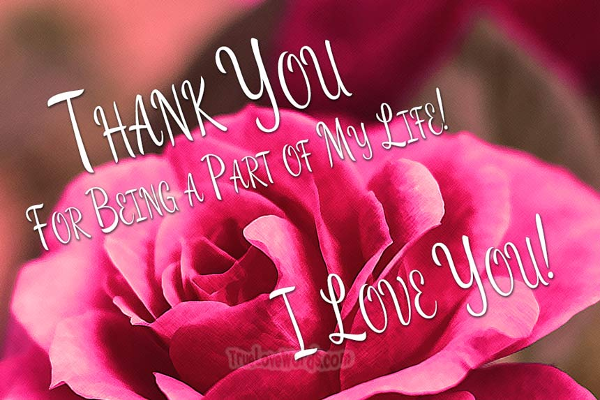 Thank You For Being A Part of My Life I Love You Messages