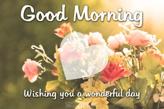 Good Morning Wishing you a wonderful day - Good morning messages for him