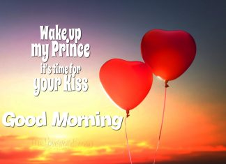 Wake up my Prince it's time for your kiss - good morning messages for him