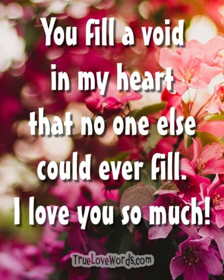 You fill a void in my heart I love you so much - I Love You Messages for Her