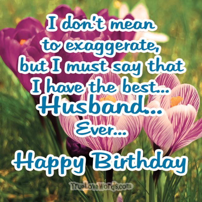 45 Birthday Wishes For Husband » True Love Words