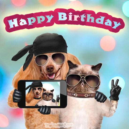 Happy birthday to our best friend