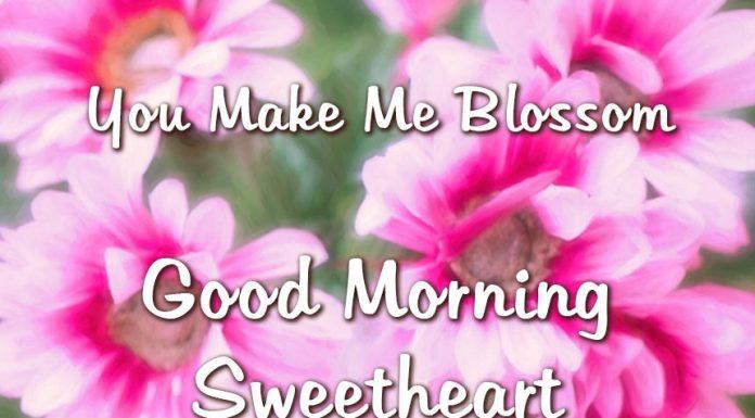 Good Morning Messages For Boyfriend - good morning sweetheart