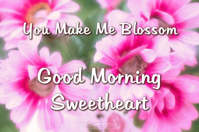 Good Morning Messages For Boyfriend - good morning sweetheart