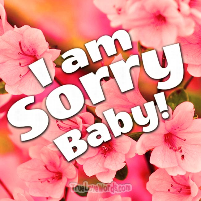 I'm sorry baby - Sorry messages