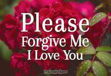 Sorry messages - Please Forgive me baby