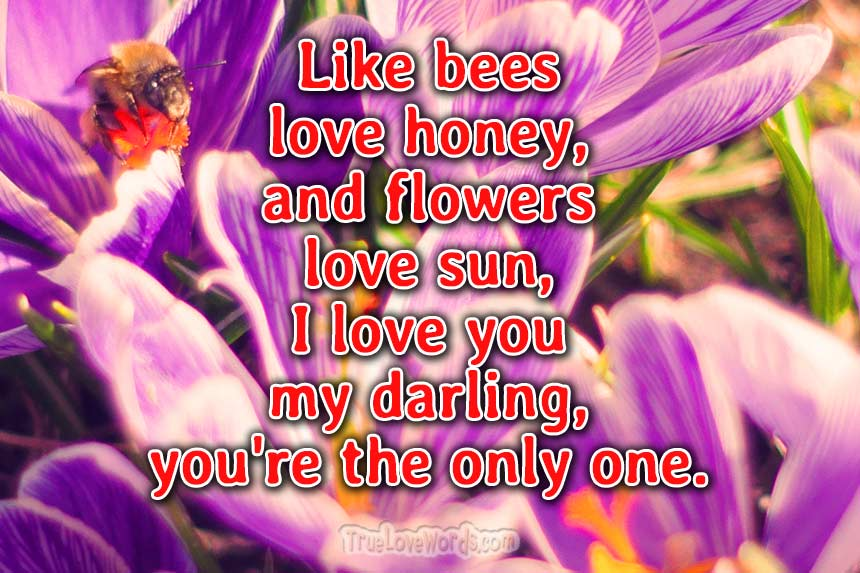 love poems for her - Like bees love honey
