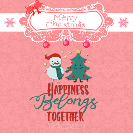 Merry Christmas wishes for friends - Happiness belongs together