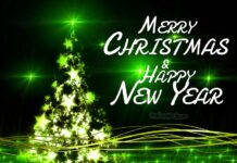 Merry Christmas and Happy New Year my Friend