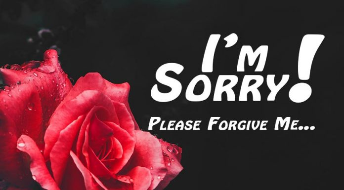 Sorry messages for wife
