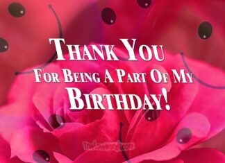 Thank You Messages For Birthday Wishes