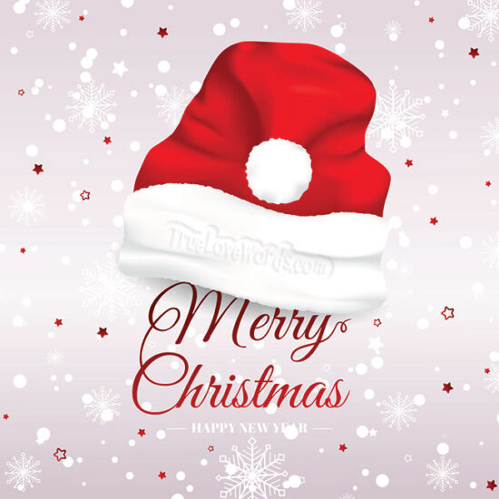 Sweet Merry Christmas Wishes and Greetings