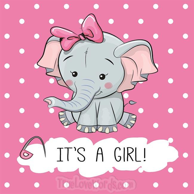 It's a girl - Prengnacy wishes