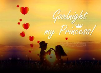 Poetic Good Night Messages For The Girl You Love