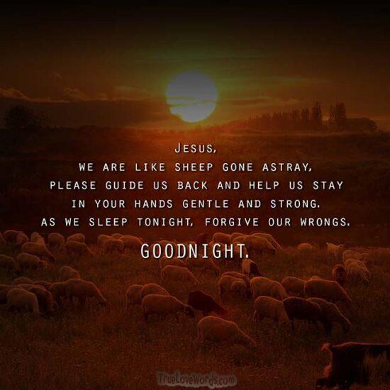Good Night Prayers For Loved Ones - Jesus