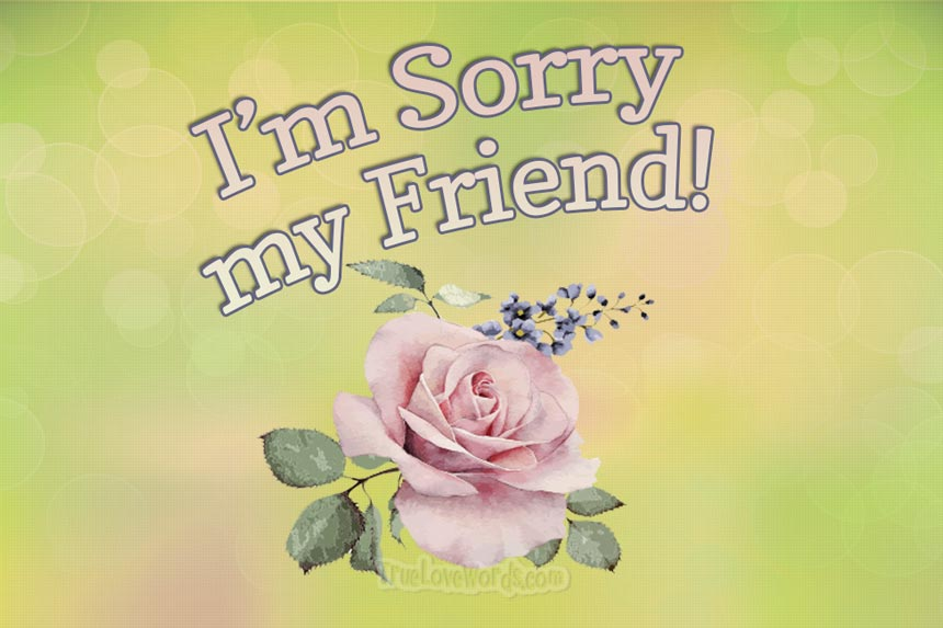 Sorry messages and apologies for friends
