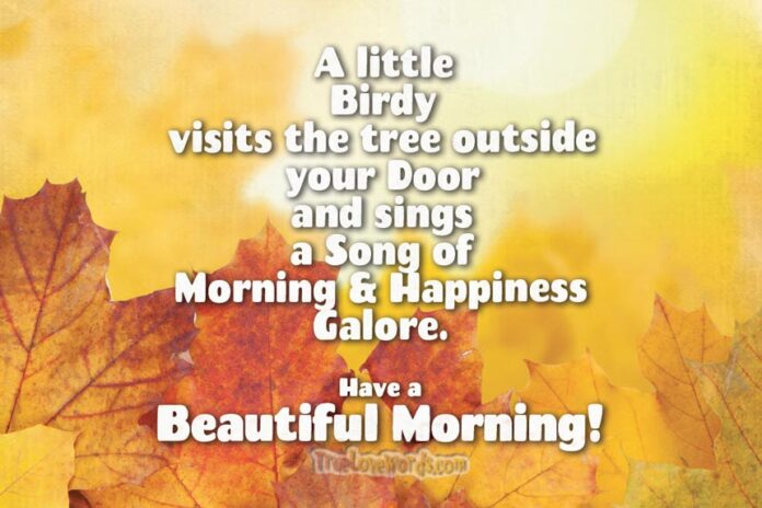 Have a Beautiful Morning