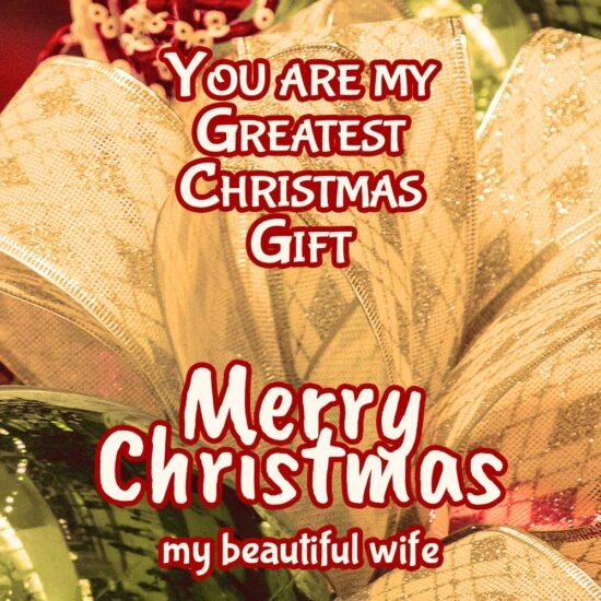 Merry Christmas my beautiful wife