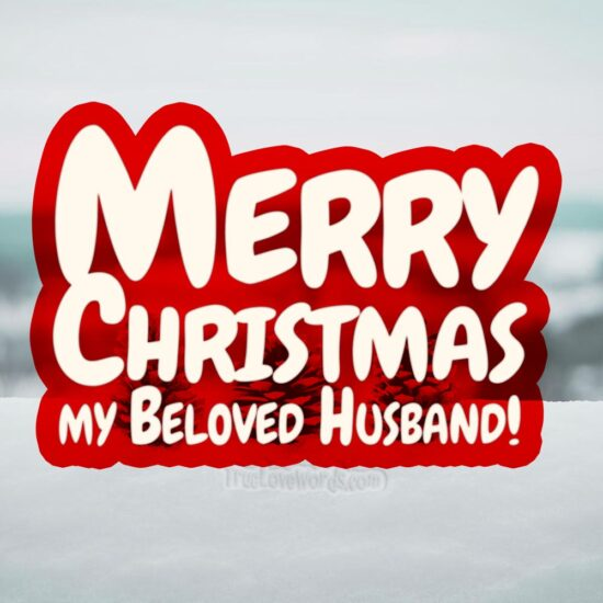 Christmas wishes to my beloved Husband