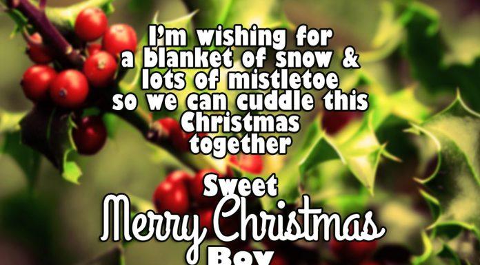 Christmas Wishes For Boyfriend - mistletoe