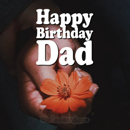 Sweet Happy Birthday Dad