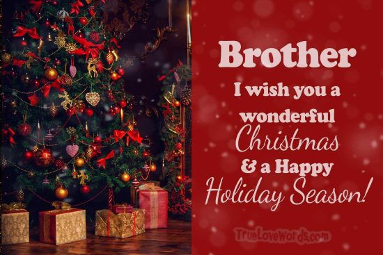 Brother wishing you merry Christmas happy holiday season